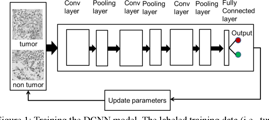 Figure 1 for Accurate Tumor Tissue Region Detection with Accelerated Deep Convolutional Neural Networks