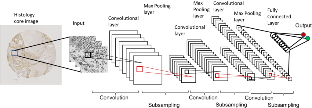Figure 2 for Accurate Tumor Tissue Region Detection with Accelerated Deep Convolutional Neural Networks
