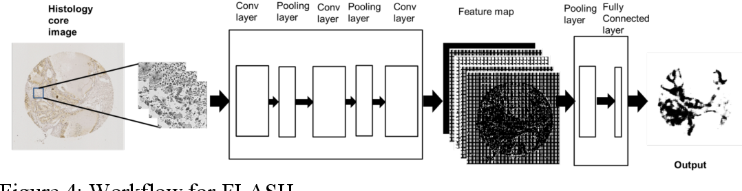 Figure 4 for Accurate Tumor Tissue Region Detection with Accelerated Deep Convolutional Neural Networks
