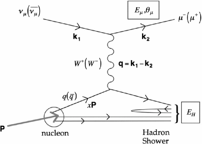 Figure 2: Feynman diagram of a νµ undergoing deep inelastic scattering with a nucleon via charged-current interaction. A large momentum transfer q via exchange of a charged W boson leads to breakup of the nucleon [40].