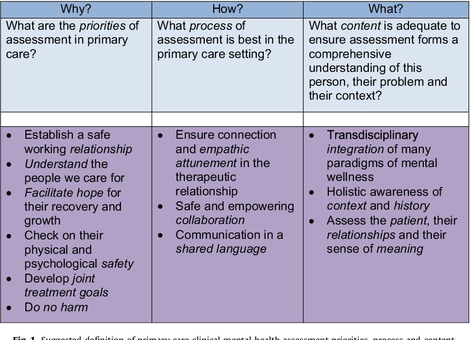 Beyond symptoms: defining primary care mental health