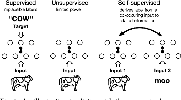 Figure 1 for Self-supervised Learning: Generative or Contrastive