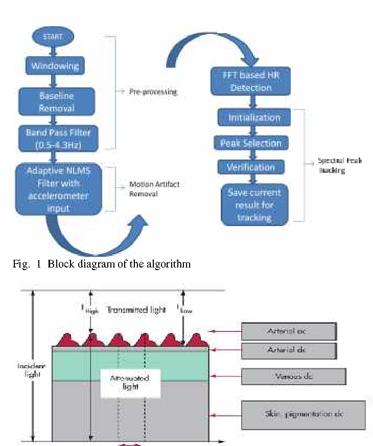 Heart rate measurement from wearable photoplethysmographic sensor figure 1 ccuart Choice Image