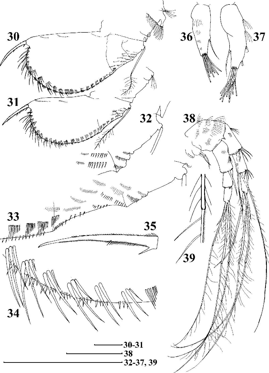 figure 30–39
