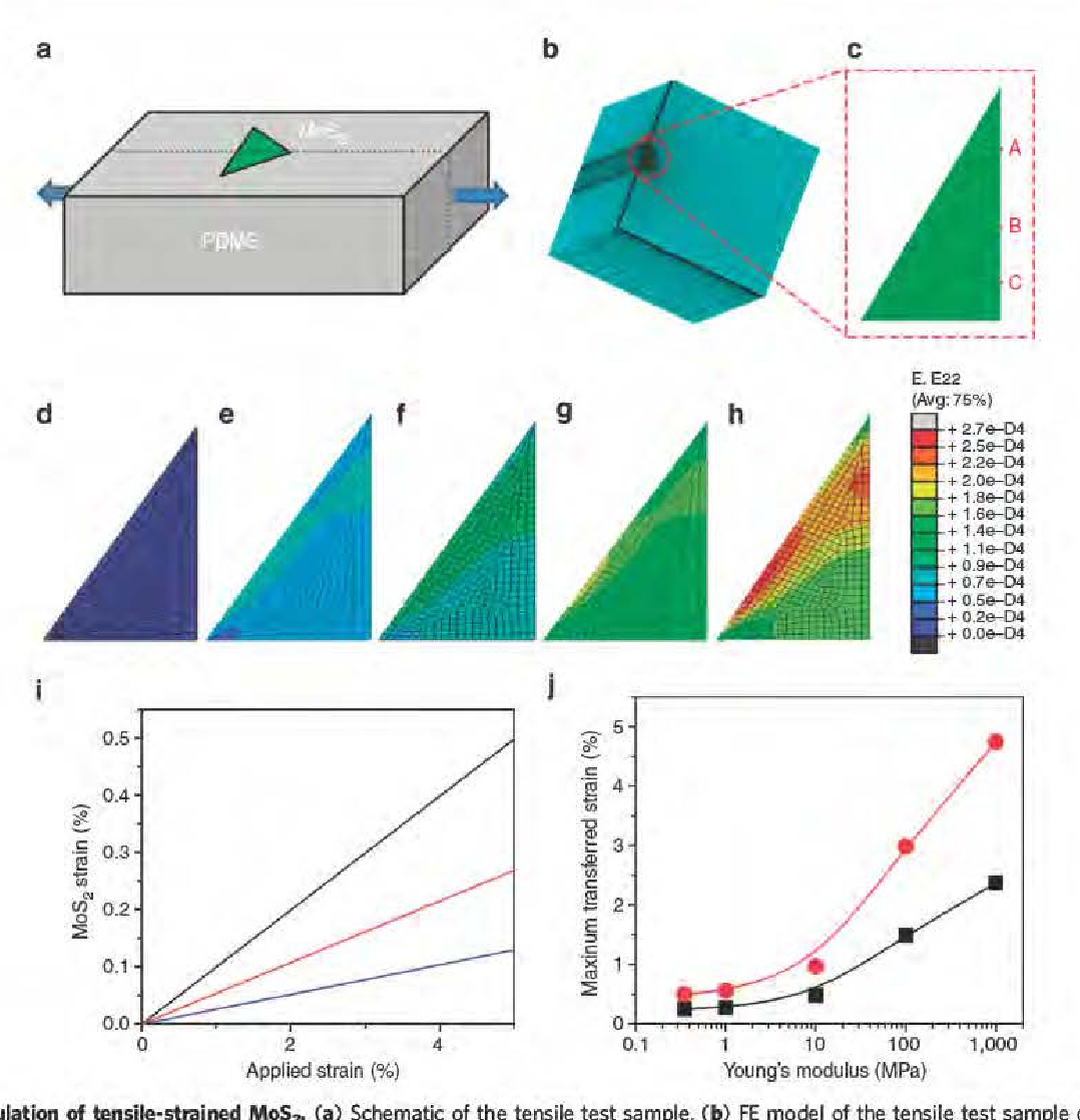 Figure 4 from strain and stm cture heterogeneity in mos 2 figure 4 i fe simulation of tensile strained mos2 a schematic of ccuart Choice Image