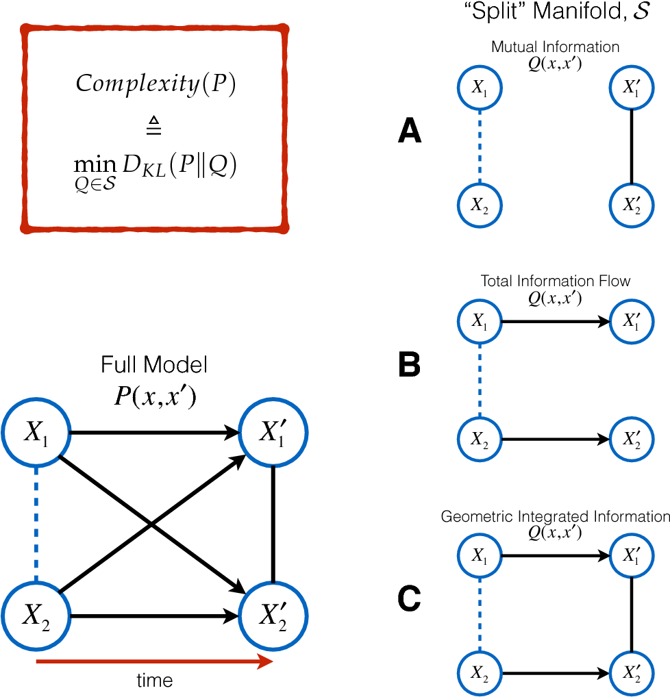 Figure 1 for Comparing Information-Theoretic Measures of Complexity in Boltzmann Machines