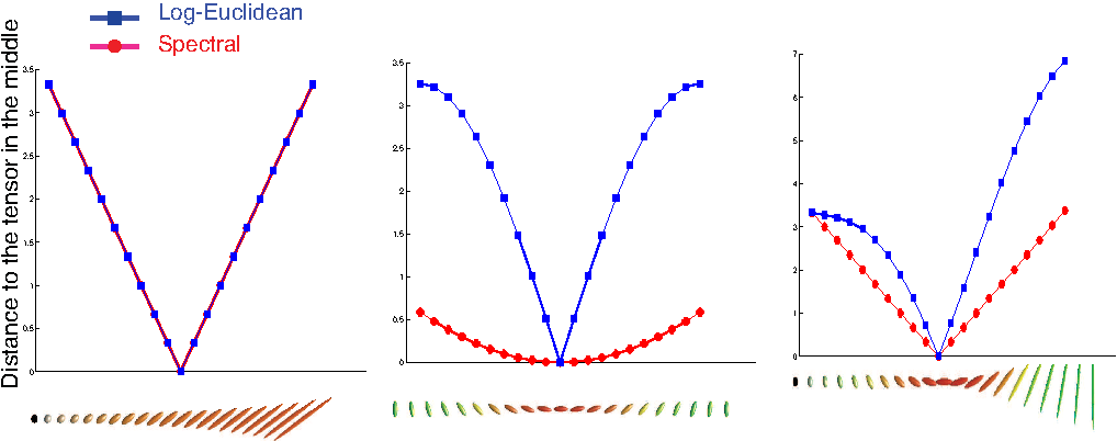 Figure 4 for An anisotropy preserving metric for DTI processing