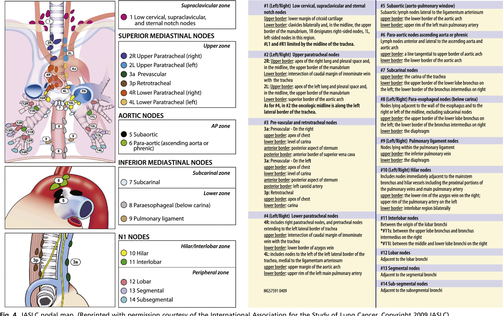 Figure 4 From Staging Of Lung Cancer Semantic Scholar