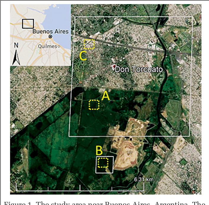 Figure 1 for Individual Tree Detection and Crown Delineation with 3D Information from Multi-view Satellite Images