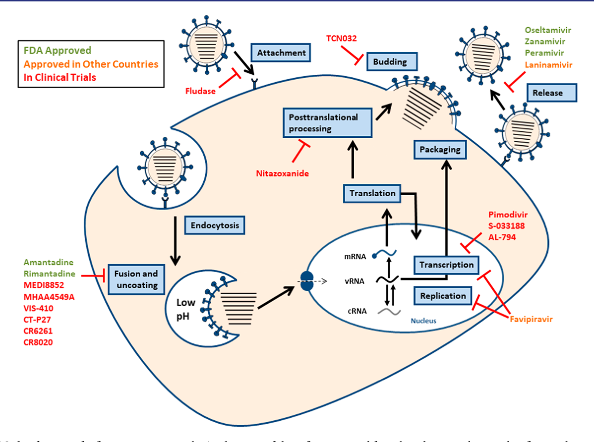 Figure 1 from The Next Wave of Influenza Drugs. - Semantic ...  Figure 1 from T...