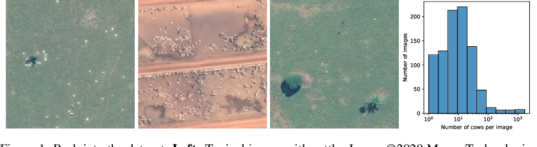 Figure 1 for Counting Cows: Tracking Illegal Cattle Ranching From High-Resolution Satellite Imagery
