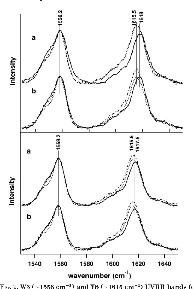 Figure 2 from Conformational Changes in Hemoglobin S ( E 6 V