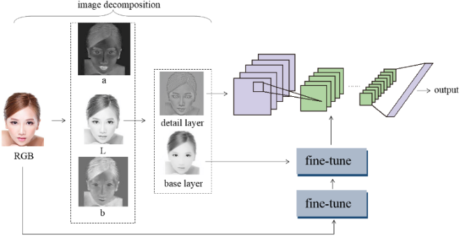 Figure 3 for A new humanlike facial attractiveness predictor with cascaded fine-tuning deep learning model