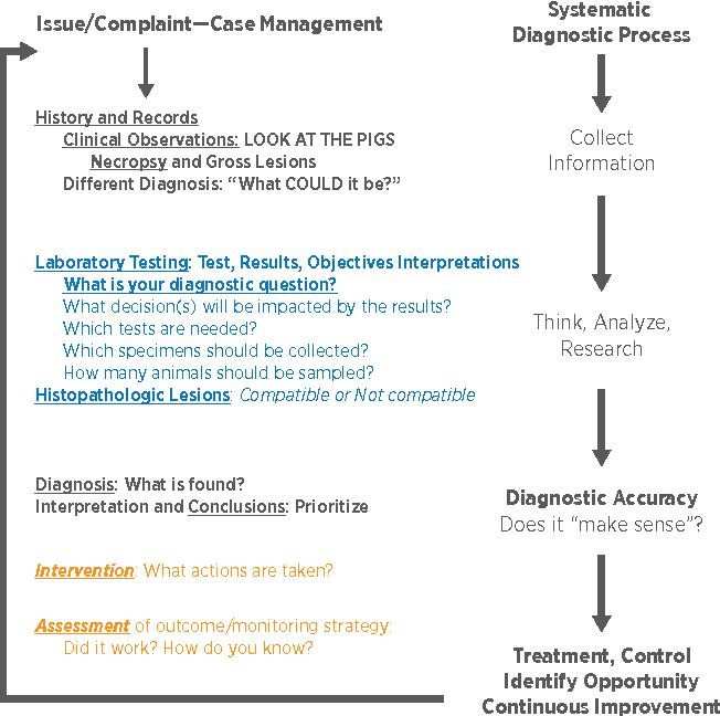 PDF] A CONTEMPORARY REVIEW OF MYCOPLASMA HYOPNEUMONIAE