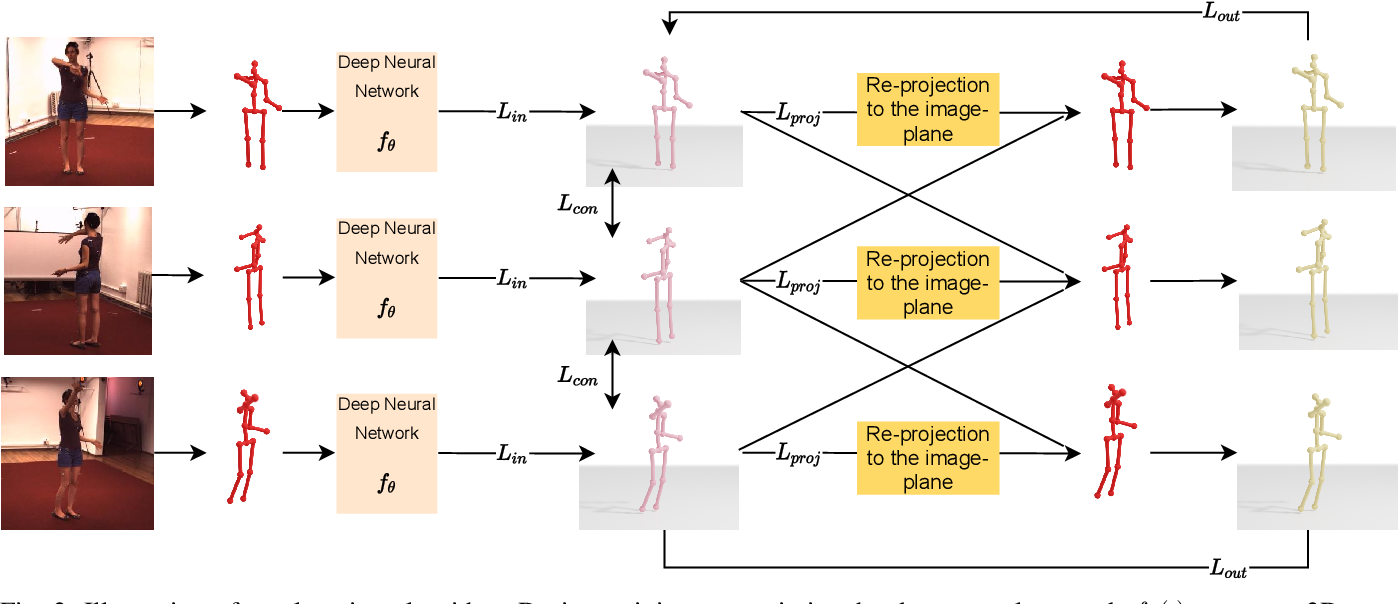 Figure 2 for Self-Supervised 3D Human Pose Estimation with Multiple-View Geometry