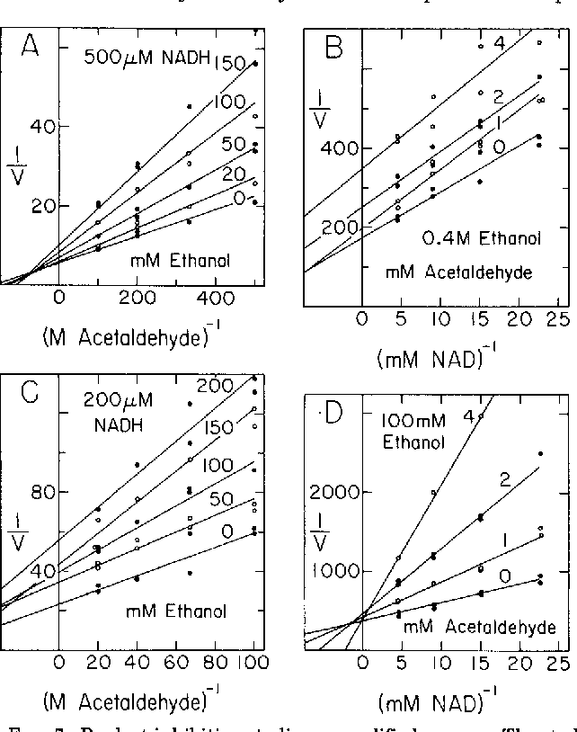 Figure 7 From Characterization And Kinetics Of Native And Chemically
