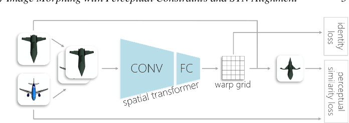 Figure 2 for Image Morphing with Perceptual Constraints and STN Alignment
