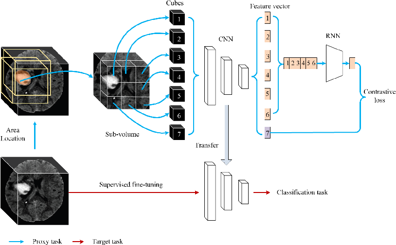 Figure 1 for Embedding Task Knowledge into 3D Neural Networks via Self-supervised Learning