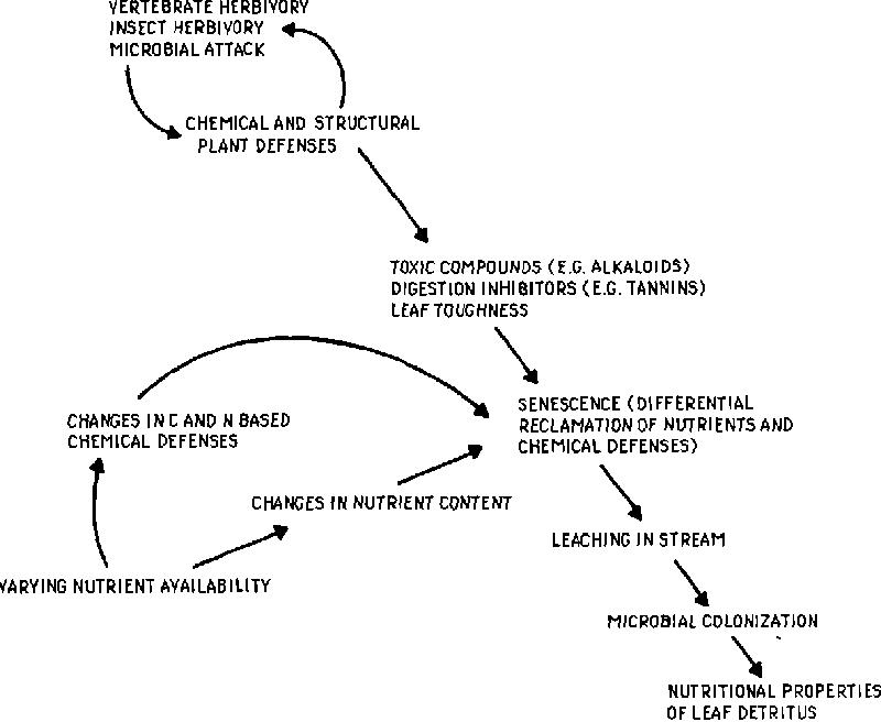 Stream Properties Diagram Trusted Wiring Diagrams