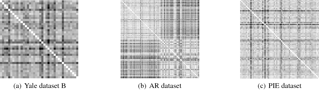 Figure 3 for Dimensionality Reduction with Subspace Structure Preservation