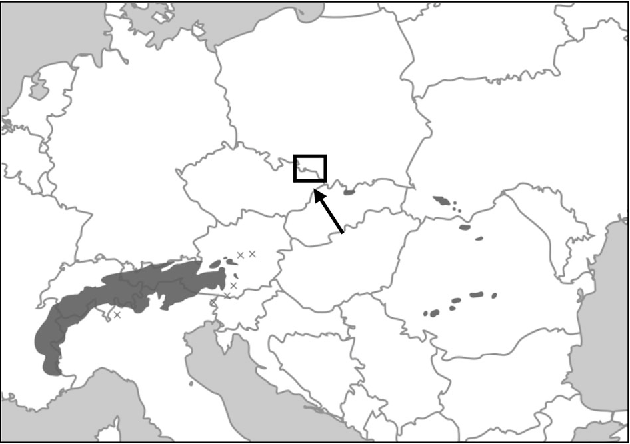 Figure 1 from Genetic Resources of Pinus cembra L  Marginal
