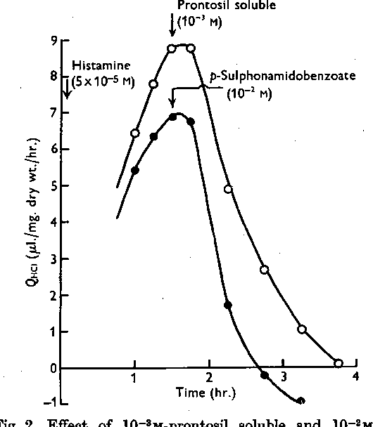 Figure 2 from The function of carbonic anhydrase in the stomach ...