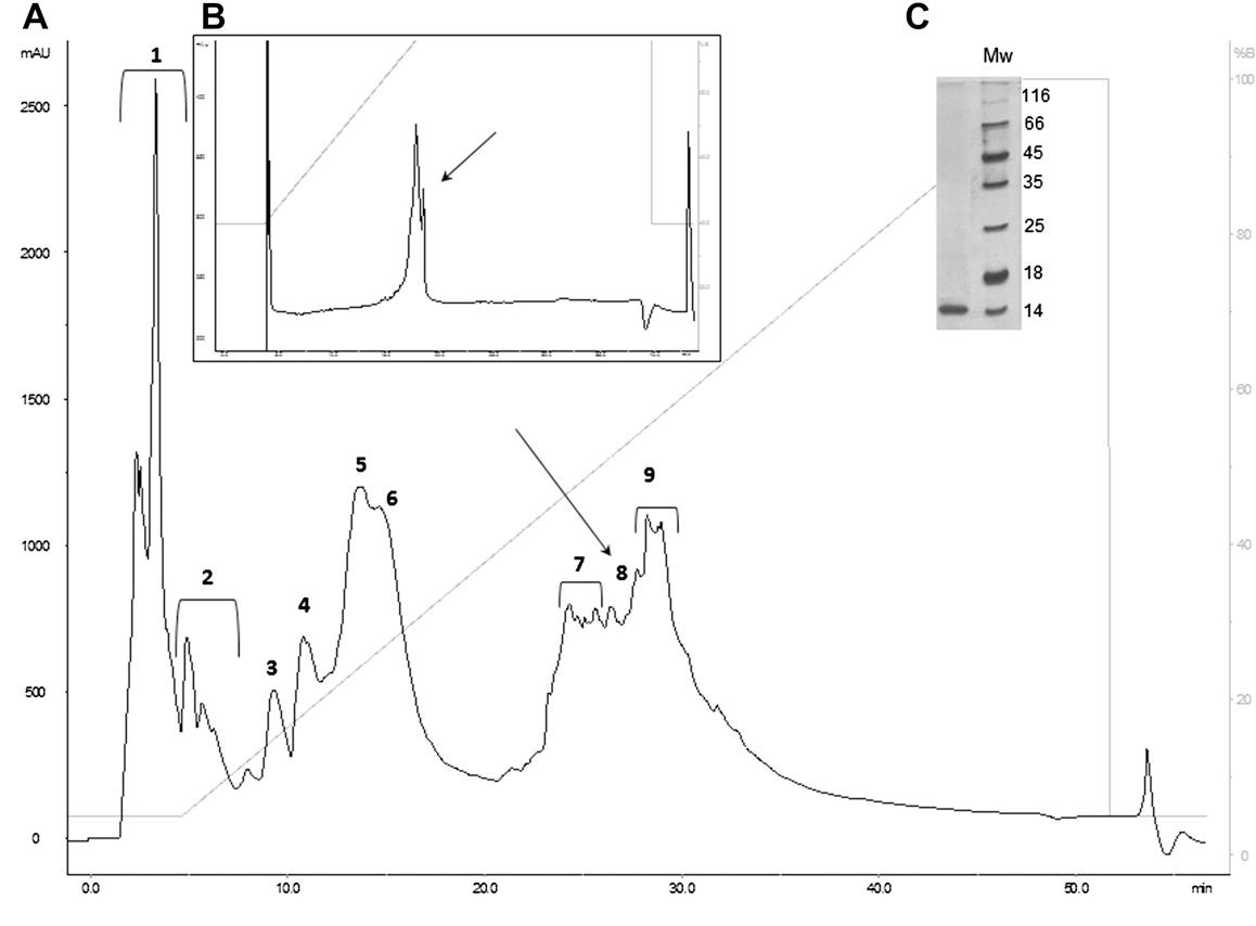 Figure 1 from Potamotrygon cf. henlei stingray mucus: biochemical ...
