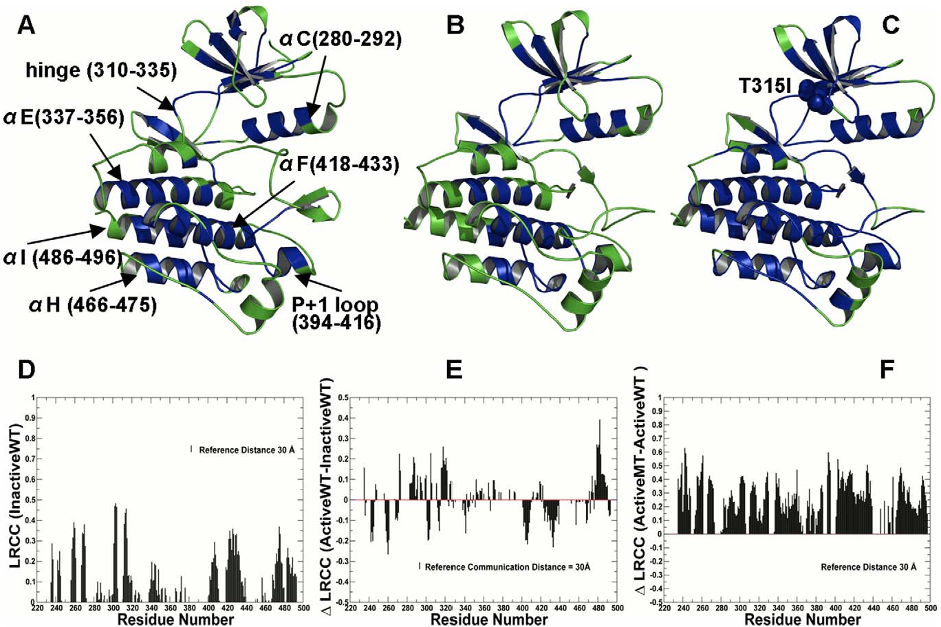 Figure 1. Structural Mapping of Allosteric Communication Profiles in the ABL Kinase Catalytic Domain. Structural mapping of residues involved in long-range communication in different functional states of the ABL catalytic domain: (A) the inactive ABL-WT structure (PDB ID 1IEP); (B) the active ABL-WT structure (PDB ID 1M52); (C) the active form of the ABL-T315I mutant (PDB ID 2Z60). The catalytic core is shown in green. The highlighted in blue allosterically coupled clusters correspond to the peaks in the residue-based LRCC profile computed with the reference communication threshold of 30 Å. The kinase segments and corresponding residue ranges are indicated by respective arrows. (D) The absolute LRCC values of the inactive ABL-WT form. (E) The relative LRCC values between the active and inactive ABL-WT forms. (F) The relative LRCC values between the active ABL-T315I and active ABL-WT. Each bin refers to a residue and shows the fraction of residues that efficiently communicate with this particular residue at distances greater the reference communication threshold of 30 Å. doi:10.1371/journal.pcbi.1002179.g001