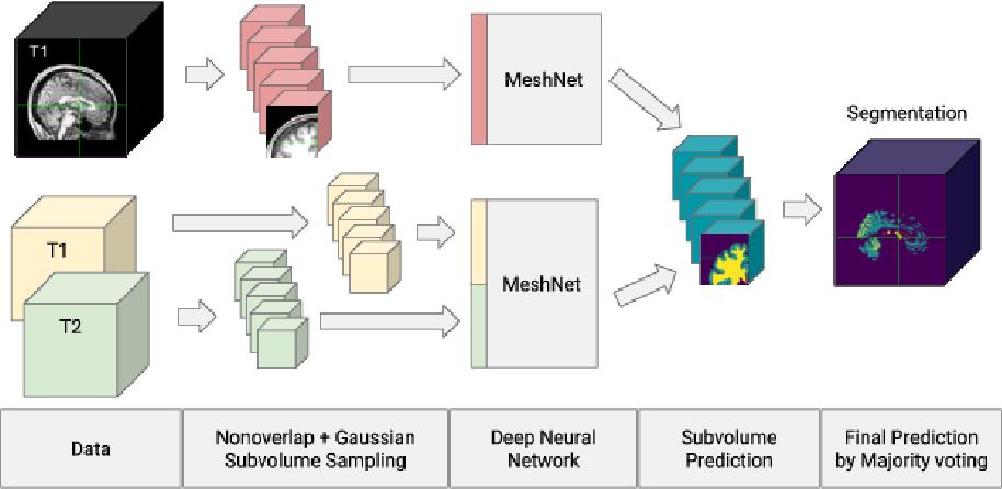Figure 4 for Almost instant brain atlas segmentation for large-scale studies