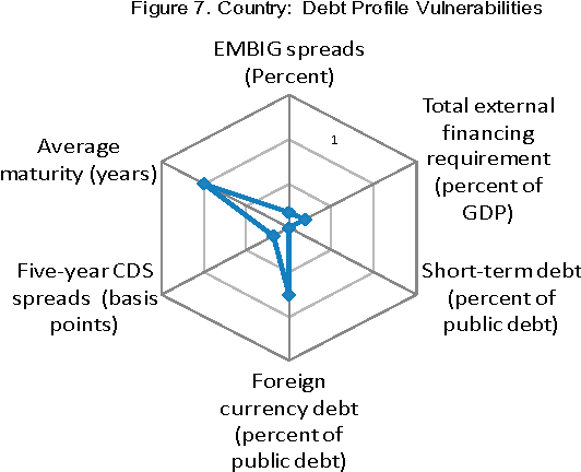 Figure 7. Country: Debt Profile Vulnerabilities