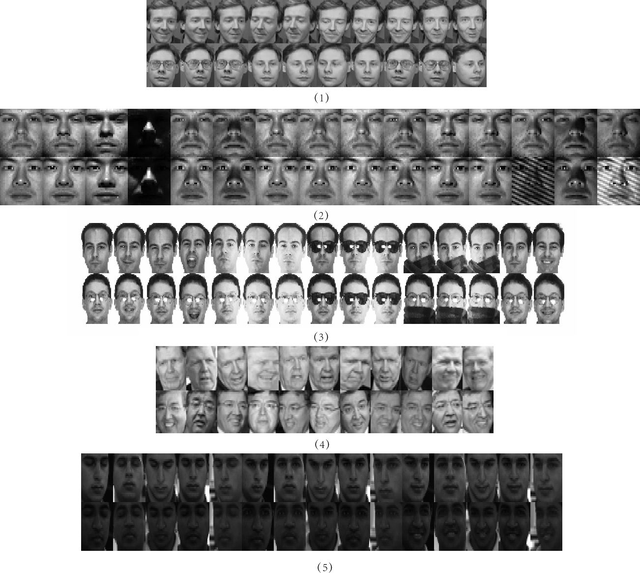 Figure 3 for Fisher Discriminative Least Square Regression with Self-Adaptive Weighting for Face Recognition