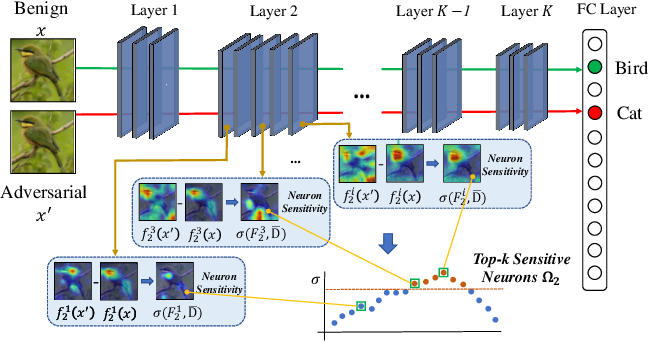 Figure 1 for Interpreting and Improving Adversarial Robustness with Neuron Sensitivity