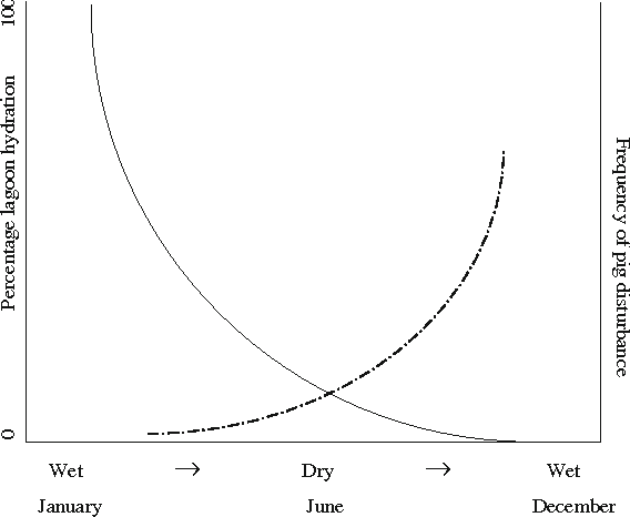 Fig. 4 Schematic of how the contrary disturbance of foraging feral pigs (broken line) juxtaposes on the natural disturbance regime of seasonal flooding and drying (solid line) in ephemeral floodplain lagoons at Lakefield National Park