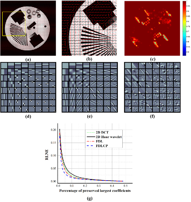Figure 1 for Fast Multi-class Dictionaries Learning with Geometrical Directions in MRI Reconstruction