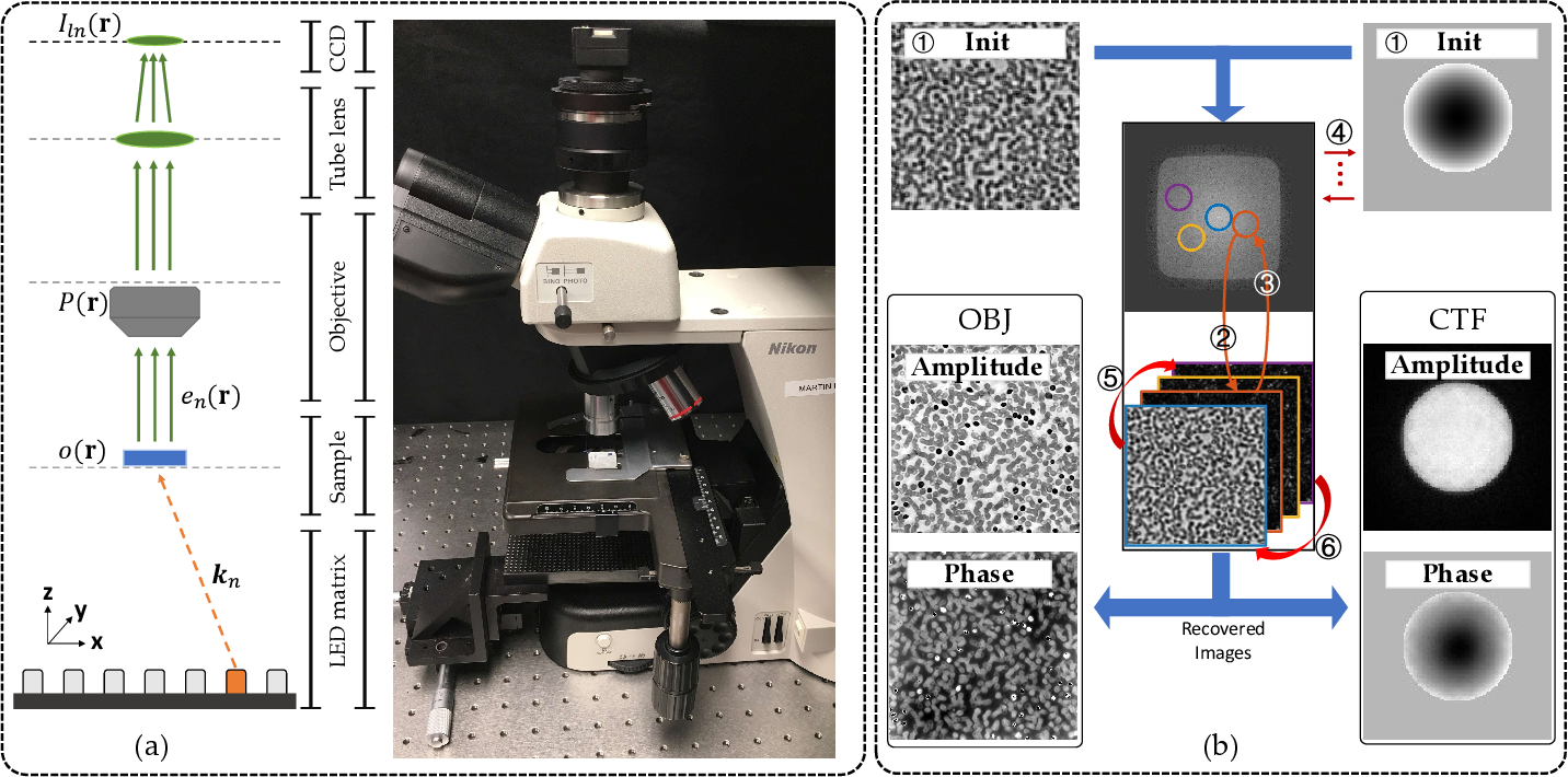 Figure 1 for PgNN: Physics-guided Neural Network for Fourier Ptychographic Microscopy