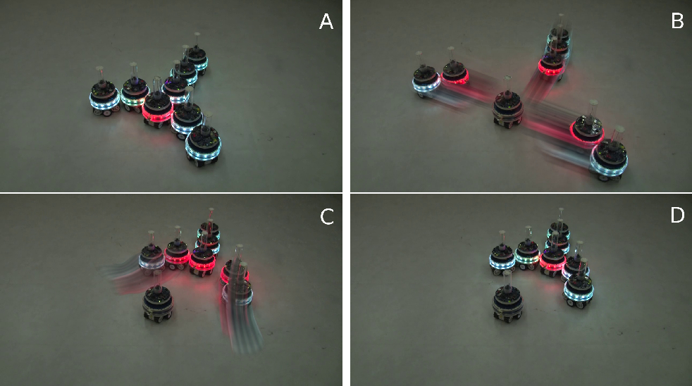 Figure 3 for Virtual Nervous Systems for Self-Assembling Robots - A preliminary report