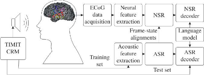 Figure 1 for On Neural Phone Recognition of Mixed-Source ECoG Signals