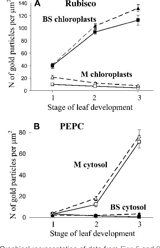 Figure 7 from Development of structural and biochemical ...