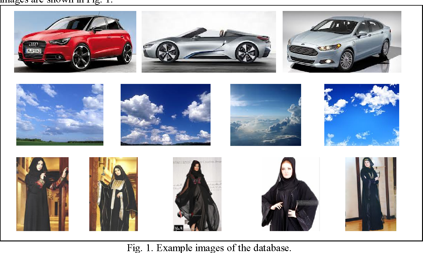 Figure 1 for Image Classification by Feature Dimension Reduction and Graph based Ranking