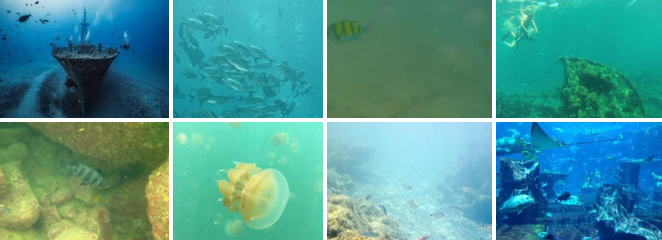 Figure 1 for Underwater Image Enhancement via Learning Water Type Desensitized Representations