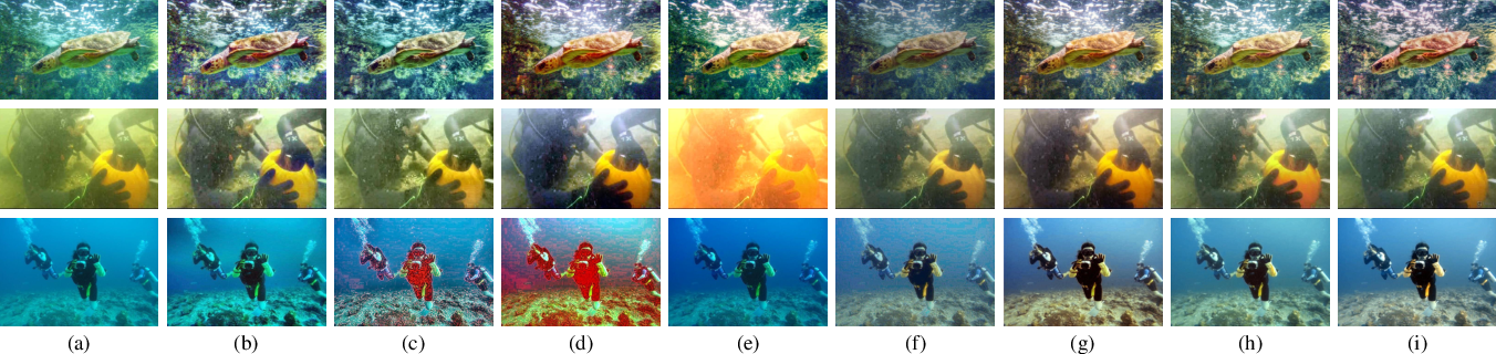 Figure 3 for Underwater Image Enhancement via Learning Water Type Desensitized Representations
