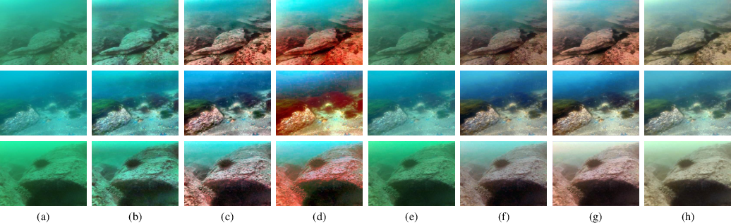 Figure 4 for Underwater Image Enhancement via Learning Water Type Desensitized Representations