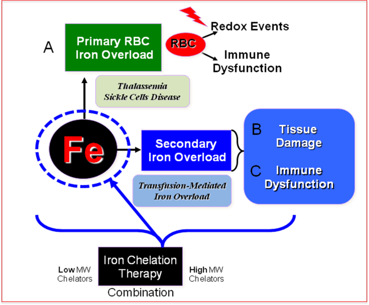 Figure 2 1 from The crisis of iron in transfusion medicine
