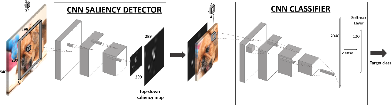 Figure 3 for Top-Down Saliency Detection Driven by Visual Classification