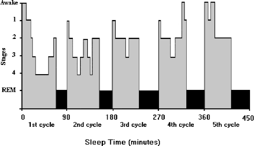 The Impact Of Sleep On Learning And Behavior In Adolescents