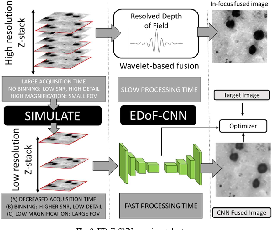 Figure 3 for Deep Learning Enhanced Extended Depth-of-Field for Thick Blood-Film Malaria High-Throughput Microscopy