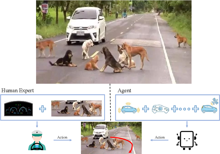 Figure 1 for Seeing Differently, Acting Similarly: Imitation Learning with Heterogeneous Observations
