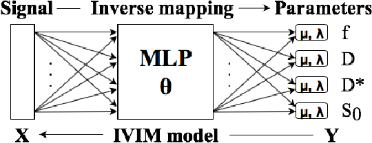 Figure 1 for Implicit Modeling with Uncertainty Estimation for Intravoxel Incoherent Motion Imaging