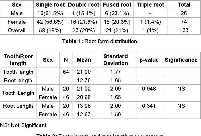 Root Morphology and Tooth Length of Maxillary First Premolar in ...