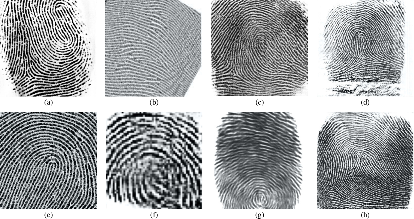 Figure 2 for Fingerprint Synthesis: Search with 100 Million Prints